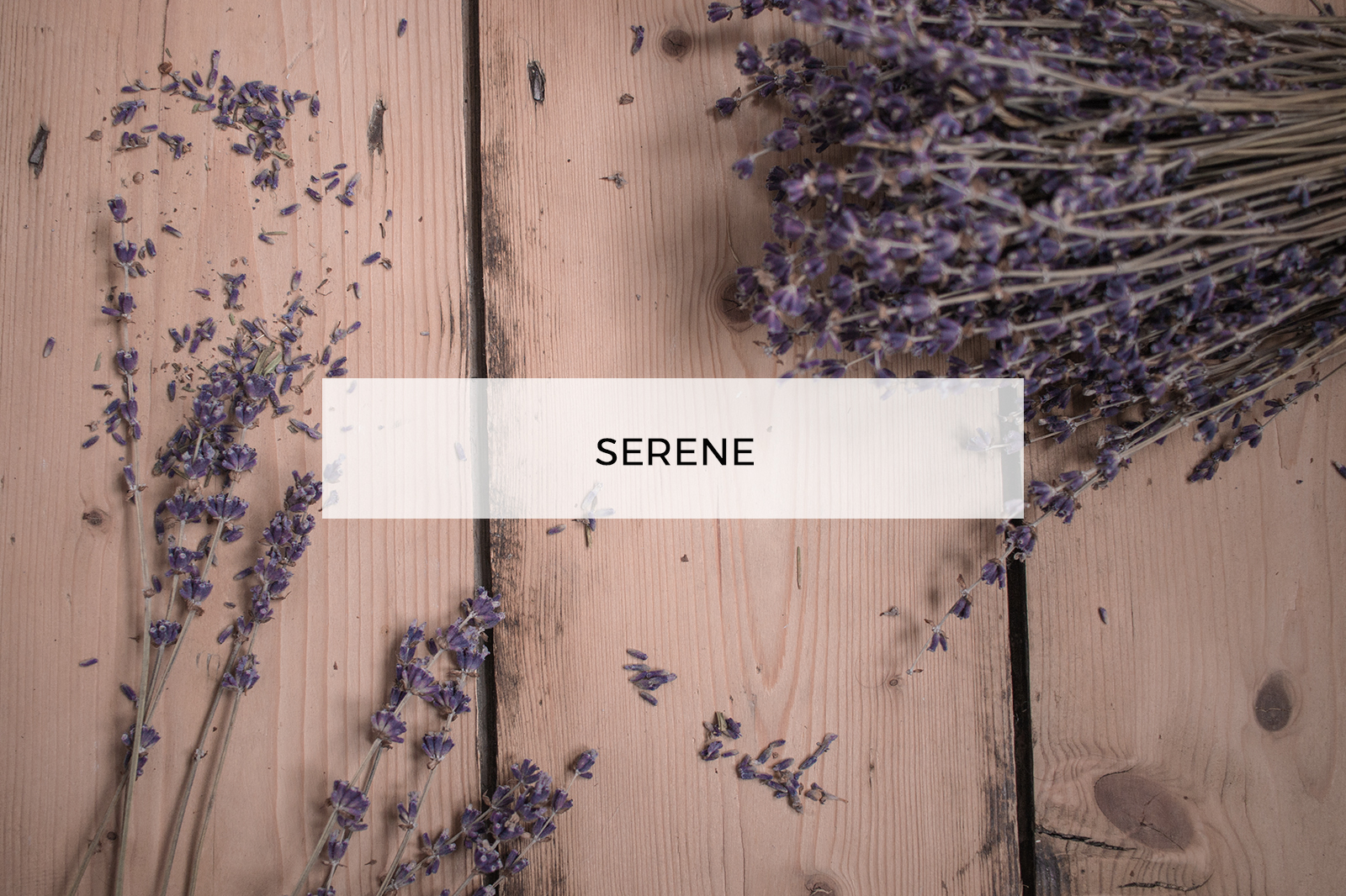 Maddi Alexander Serene fragrance