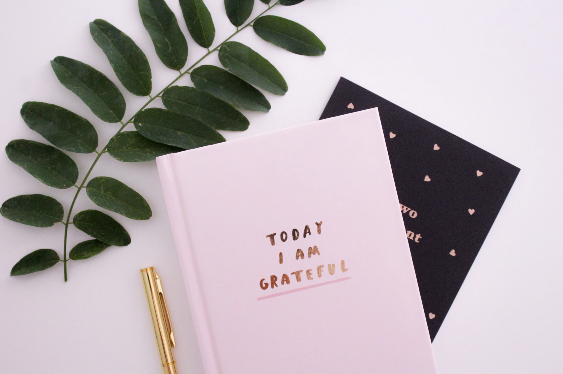 maddi alexander wellbeing wednesday why start a gratitude journal